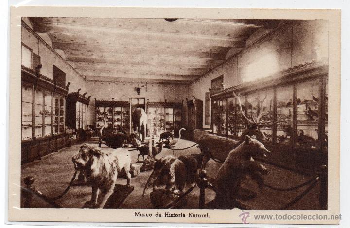 BARCELONA .- REAL COLEGIO DE LA ESCUELAS PIAS DE SARRIA .- MUSEO HISTORIA NATURAL (Postales - España - Cataluña Antigua (hasta 1939))