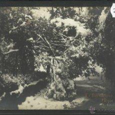 Postales: BARCELONA - NEVADA - PARQUE - FOTOGRAFICA -(24126). Lote 45035761