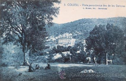 COLLELL ROISIN 3 VISTA PANORÀMICA DE LES DELICIES (Postales - España - Cataluña Antigua (hasta 1939))