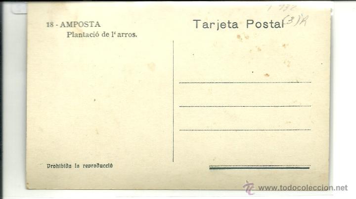 Postales: (PS-43212)POSTAL DE AMPOSTA-PLANTACIO DE L´ARROS - Foto 2 - 46758821