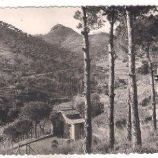 Postales: POSTAL DE ARGENTONA CAMINO BURRIACH .. Lote 50946184