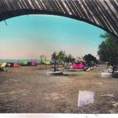 Postales: POSTAL DE SAN CARLOS DE LA RAPITA - CAMPING ALFAQUES.. Lote 52382608