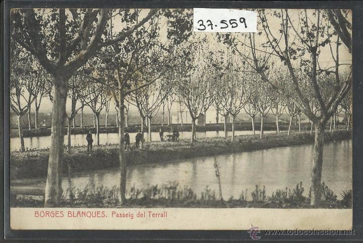 LES BORGES BLANQUES   PASSEIG DEL TERRALL   THOMAS   (37559) (Postales