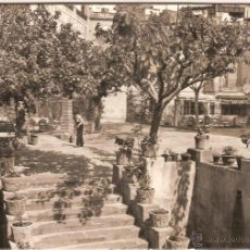 Postales: CALDA DE MONTBUY, TERMAS VICTORIA, DETALLE DEL JARDIN - SOBERANAS Nº 9 - CIRCULADA 1958. Lote 52550253