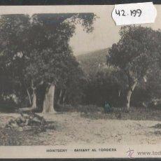 Postales: MONTSENY - BAIXANT AL RIU TORDERA - FOTOGRAFICA - (42199). Lote 55060485