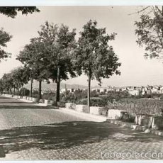 Postales: TARRAGONA MORA DE EBRO PASEO DEL PUENTE FOTO RAYMOND, ESCRITA. Lote 56745669