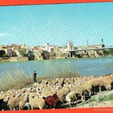 Cartes Postales: AMPOSTA - TARRAGONA - VISTA PARCIAL DESDE EL RIO EBRO. Lote 56840373