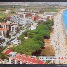 """Postales: (41466)POSTAL SIN CIRCULAR,""""LA PINEDA"""" (ENTIDAD TURÍSTICA DE LA COSTA DORADA),SALOU,TARRAGONA,CATALU. Lote 56854136"""