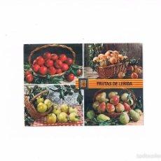 Postales: POSTAL ANTIGUA LLEIDA LERIDA SIN CIRCULAR FRUTAS DE LERIDA. Lote 58678140