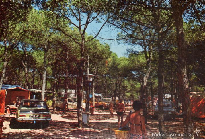 Bella Terra Blanes : Vesiv postal blanes camping caravaning bella t comprar postales