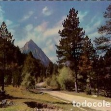 Postales: POSTAL A COLOR 5021 PIRINEOS DE LERIDA EL PALLARS VALLE DE ESPOT CAMINO DE SAN MAURICIO. Lote 74164279