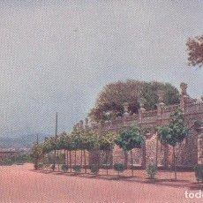 Postales: POSTAL BARCELONA - PASEO CENTRAL DEL PARQUE DE MONTJUICH -EDICIONES VICTORIA , N. COLL SALIETI. Lote 83732832