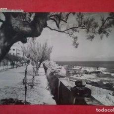 Postales: LA ESCALA POSTAL FOTOGRÁFICA PASEO DE LUIS ALBERT AÑOS '60. Lote 96008867