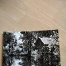 Postales: POSTAL. ARBÚCIES. PARC MONGÉ. A. ZERKOWITZ, FOT.. Lote 96653154