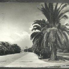 Postales: 3 - SALOU (TARRAGONA) PASEO DE LAS PALMERAS - FOTO. RAYMOND - CIRCULADA, SELLO DESPRENDIDO -. Lote 106037083