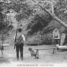 Postales: P- 7911. POSTAL SANT HILARI SACALM, FONT DEL PICO.. Lote 106223519