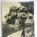 Postales: 8 - BARCELONA, EXCURSIÓN AL TIBIDABO, NEVADA 1914. Lote 107635447