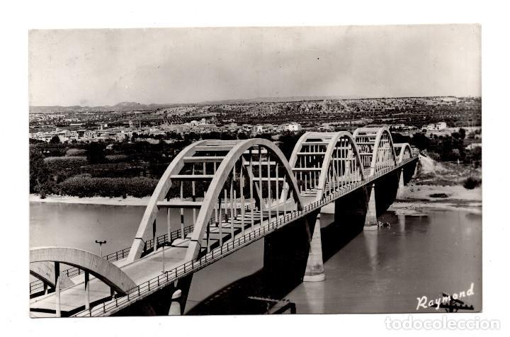 MORA LA NUEVA (TARRAGONA).- PUENTE SOBRE EL RIO EBRO. (Postales - España - Cataluña Moderna (desde 1940))