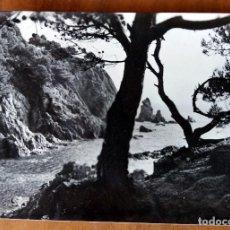 Postales: POSTAL - PALAMÓS (COSTA BRAVA) Nº 2223 ELS CANYERS - A. CAMPAÑA (VER FOTO ADICIONAL). Lote 112661187