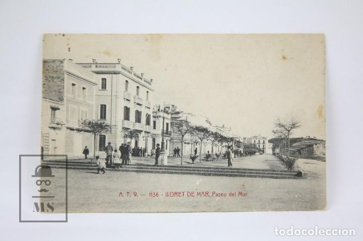 ANTIGUA POSTAL - LLORET DE MAR Nº 1136 / PASEO DEL MAR - ED. ANGEL TOLDRÁ - AÑO 1917 (Postales - España - Cataluña Antigua (hasta 1939))