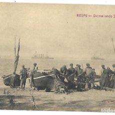 Postales: POSTAL DE ROSAS, GIRONA. DESMAYANDO SARDINA. FOT. FONOLLERAS. SIN CIRCULAR.. Lote 116133243