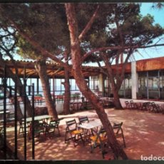 Postales - Terraza del HOTEL INFANTE .- HOSPITALET DEL INFANTE. - 116162475