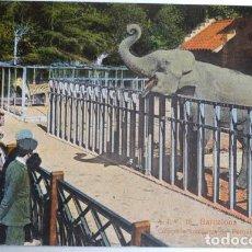 Postales: POSTAL A.T.V. 16 BARCELONA COLECCIÓN ZOOÑOGICA DEL PARQUE. Lote 120956731