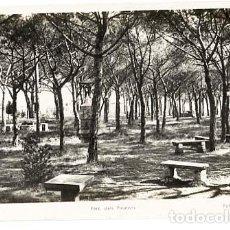Postales: BARCELONA CARDEDEU PARC DELS PINATONS FOT. L. ROISIN, ESCRITA. POSTAL FOTOGRÁFICA. Lote 126481351