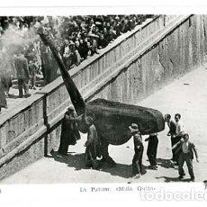 Postales: BARCELONA BERGA LA PATUM MULA GUITA FOTO SUBIRA. SIN CIRCULAR. Lote 136218750