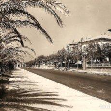 Postales: SALOU (TARRAGONA) - PASEO DE LAS PALMERAS JUNTO A LA PLAYA - FOTO RAYMOND - SIN CIRCULAR. Lote 138261102