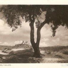 Postales: AMETLLA DEL VALLES ARXIU RICART POSTAL FOTOGRÁFICA CIRCULADA . Lote 140500538