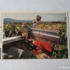 Postales: ANTIGUA POSTAL LA VANGUARDIA CATALUNYA UNIVERSAL AÑOS 90: VENDIMIA, SANT SADURNÍ (10'2 X 14'8 CM). Lote 140808798