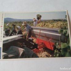 Postales: ANTIGUA POSTAL LA VANGUARDIA CATALUNYA UNIVERSAL AÑOS 90: VENDIMIA, SANT SADURNÍ (10'2 X 14'8 CM). Lote 140808878