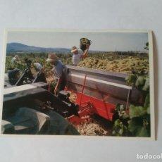 Postales: ANTIGUA POSTAL LA VANGUARDIA CATALUNYA UNIVERSAL AÑOS 90: VENDIMIA, SANT SADURNÍ (10'2 X 14'8 CM). Lote 140808946