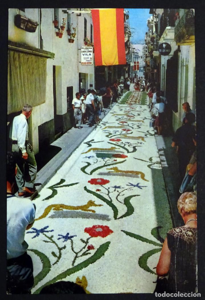 Postales: Colección de 10 postales de las alfombras de flores del Corpus de Sitges - Foto 3 - 146637710