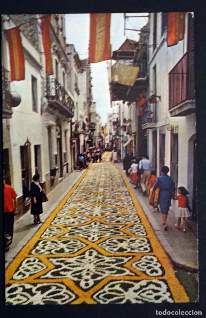 Postales: Colección de 10 postales de las alfombras de flores del Corpus de Sitges - Foto 6 - 146637710
