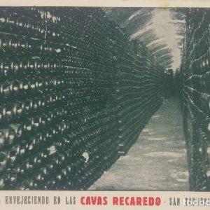 Champaña envejeciendo en las Cavas Recaredo. San Sadurní de Noya