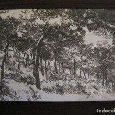 Postales: BARCELONA-EXCURSION TIBIDABO-DIA DE LA NEVADA-1914-FOTOGRAFICA ROISIN-6-POSTAL ANTIGA-(56.417). Lote 148357726