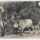 Postales: CASTELLTERÇOL - UNA LABOR AGRÍCOLA - CARRETA DE BOUS - CARRO DE BUEYES - P28482. Lote 153347814