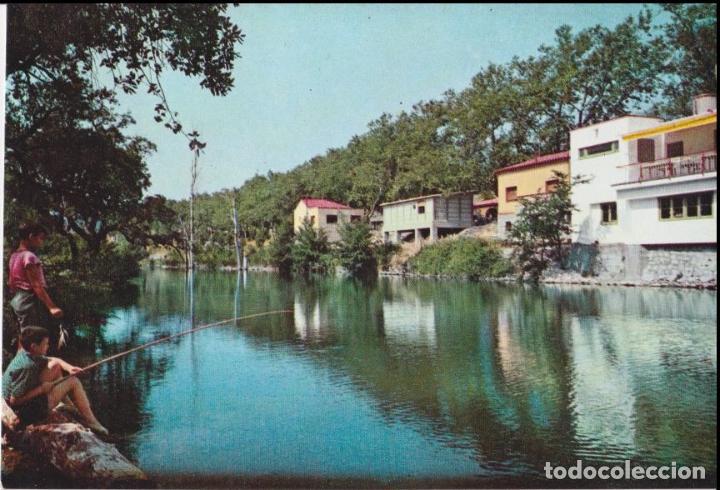 LA JUNQUERA, ALREDEDORES DEL HOTEL LA PERGOLA - FOTO S. BOSCH 2048 - S/C (Postales - España - Cataluña Moderna (desde 1940))