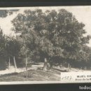 Postales: MASIA SOLERS-PASEO DE LAS ENCINAS-VILANOVA I LA GELTRU-SANT PEDRO DE RIBAS-FOTOGRAFICA-(58.803). Lote 160399282