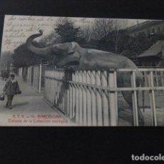 Postales: BARCELONA ELEFANTE DE LA COLECCION ZOOLOGICA. Lote 164619506