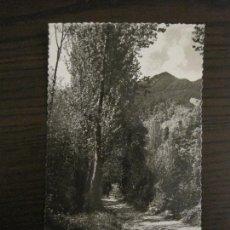 Postales: VILADRAU-TURO GROS-ED·J. ARMENGOU-POSTAL ANTIGUA-VER FOTOS-(59.447). Lote 164747666