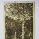 Postales: CASTELLTERSOL-PINEDA PUJOLET-HUECOGRABADO MUMBRU-VER FOTOS-(60.522). Lote 168500924