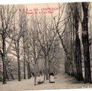 Postales: PS8184 CAMPRODÓN 'PASSEIG DE LA FONT-NOVA'. A.T.V. SIN CIRCULAR. PRINC. S. XX. Lote 168677724