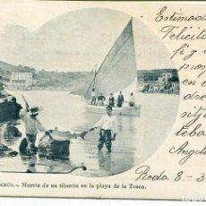 Postales: PALAMÓS-PLAYA DE LA TOSCA-MUERTE DE UN TIBURÓN- A. MAURI Nº 225. Lote 171882080