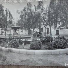 Postales: ANTIGUA POSTAL.PASEO DE LAS MELIAS.PINEDA DE MAR.BARDIA.FOTO ALONSO.. Lote 173470592