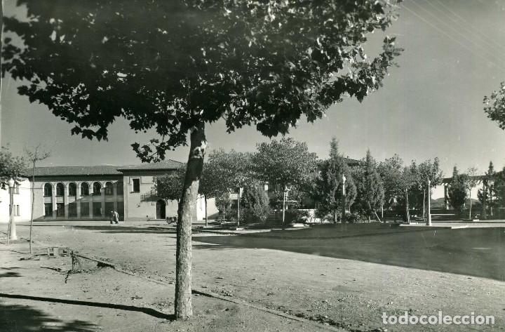 CERVERA - PÉRGOLA Y GRUPO ESCOLAR (FOTO RAYMOND) (Postales - España - Cataluña Moderna (desde 1940))