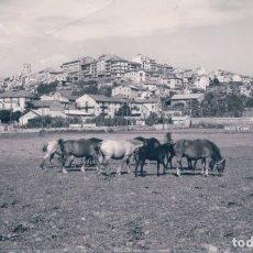 Postales: POSTAL PUIGCERDA - PIRINEO CATALAN - DETALLE DE LA CAMPIÑA Y DE LA CIUDAD - 72 - PRAT. Lote 178098085