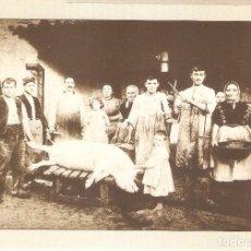 Postales: CASTELLFOLLIT DE LA ROCA, FAMILIA SALA, MUSEO DE L'EMBOTIT, EDIT.1993 , SIN CIRCULAR. Lote 179330775